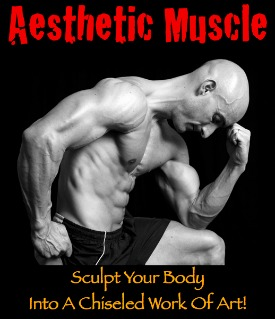 aesthetic muscle 5 day body part split workout routine