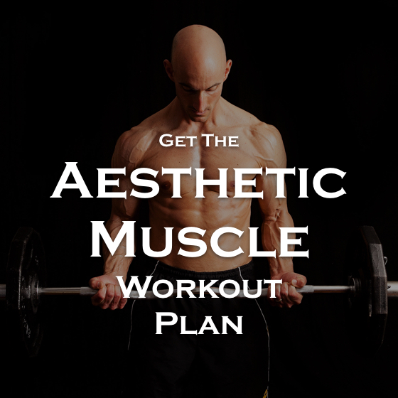 Aesthetic Muscle Plan