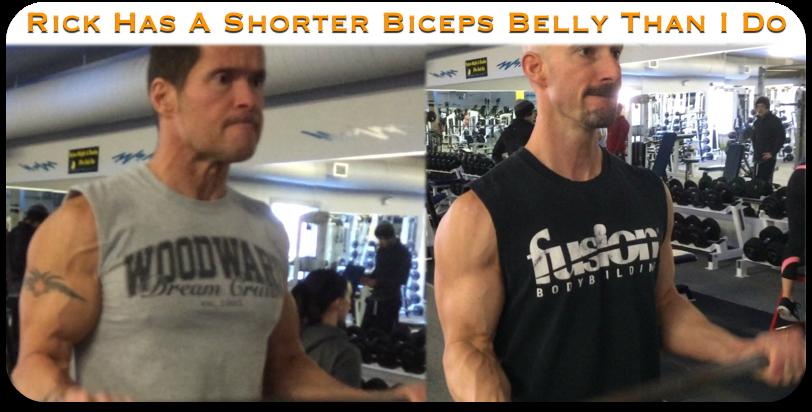 biceps attachment comparisons